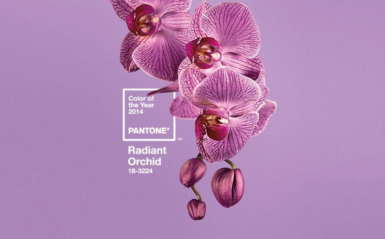 Colore Pantone 2014